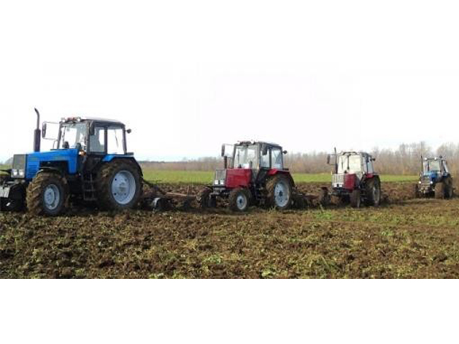 State of Agriculture in Belarus: Harvests at Any Price