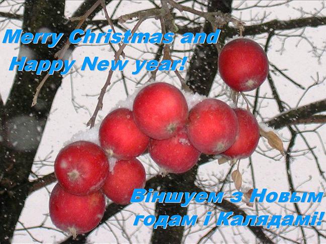 З новым годам! Happy New Year!