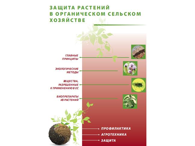 Защита растений в органическом сельском хозяйстве