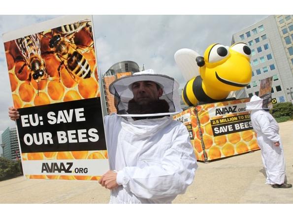 Еврокомиссией введен мораторий на применение на территории Европейского Союза пестицидов, опасных для пчел