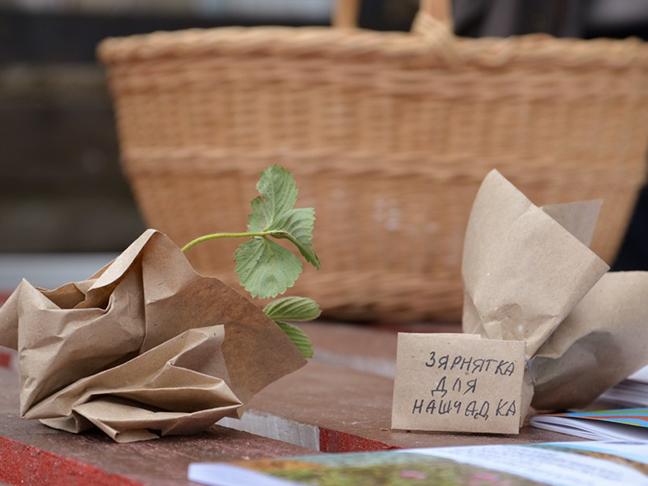 Почему стоит беречь семена со своего огорода