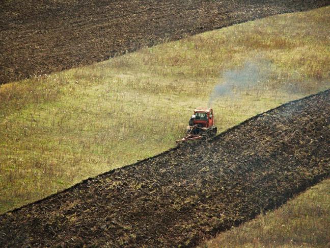Покровные культуры могут смягчить изменение климата