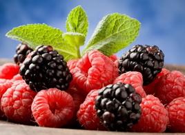 Как получить богатый урожай органической малины и ежевики?