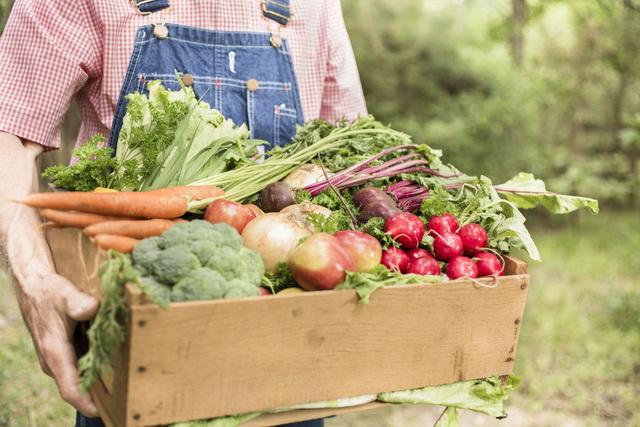 Принятие Закона об органическом земледелии должно увеличить число занятых в нём фермеров