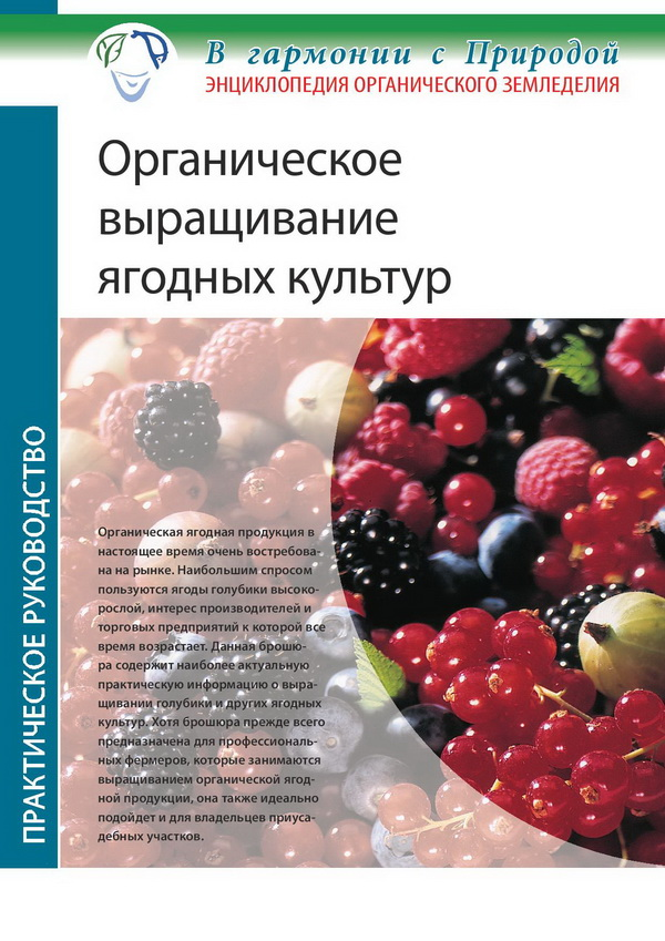 Органическое выращивание ягодных культур