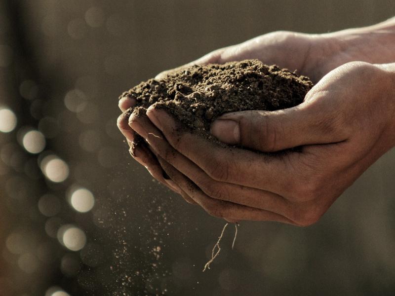 Пермакультура для устойчивости сельского хозяйства