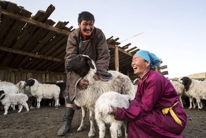 Начало проведения Десятилетия семейных фермерских хозяйств ООН