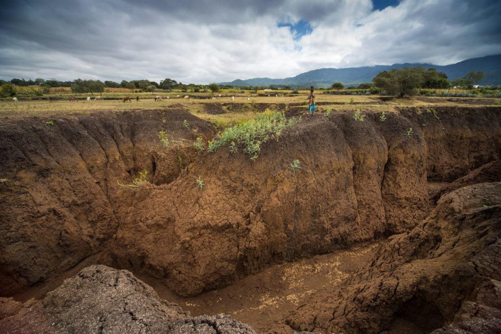 Остановим эрозию почвы ради будущего и его продовольственной безопасности