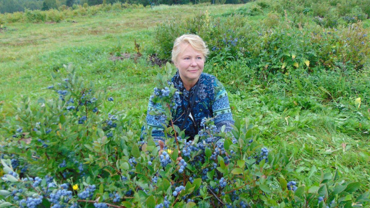 Органическое фермерство как достижение гармонии человека и природы