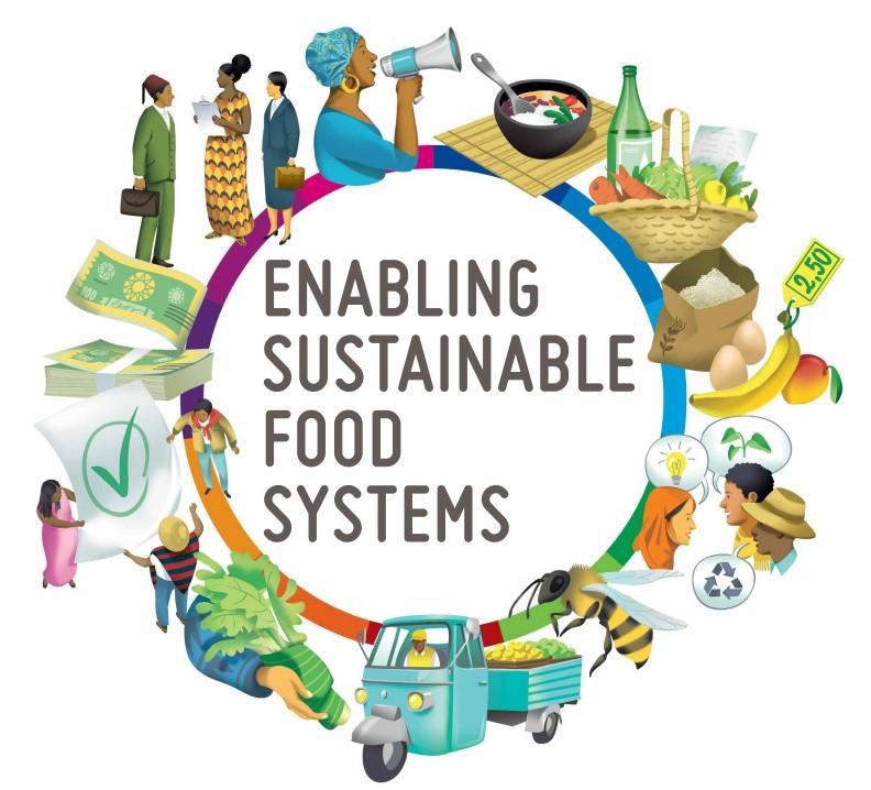 Обеспечение устойчивых продовольственных систем. Справочник новаторов