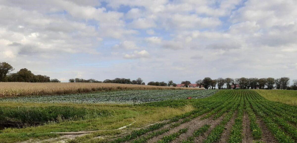 Новый онлайн курс лекций об органическом сельском хозяйстве! Начинаем 22 февраля!