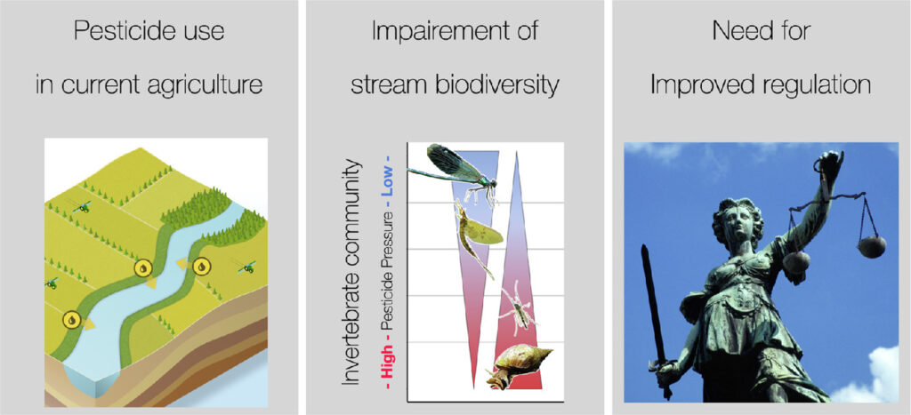 Небольшие ручьи в сельскохозяйственных экосистемах сильно загрязнены пестицидами